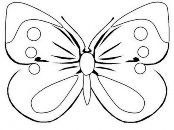 Desenhos De Borboletas Online24