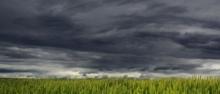 Níveis de Alerta da Meteorologia